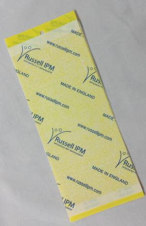 Yellow Fly Papers Pack of 10